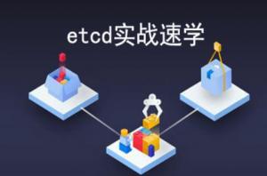 etcd实战课(更新第13节),资源教程下载
